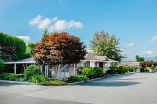 "Photo 24: 49 22308 124 Avenue in Maple Ridge: West Central Townhouse for sale in ""BRANDY WYND ESTATES"" : MLS®# R2494203"