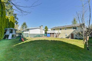 Photo 19: 7829 SUNCREST DRIVE in Surrey: East Newton House for sale : MLS®# R2382452
