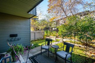 Photo 25: 71 420 Grier Avenue NE in Calgary: Greenview Row/Townhouse for sale : MLS®# A1153174