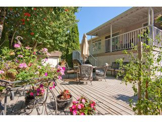 """Photo 17: 34229 RENTON Street in Abbotsford: Central Abbotsford House for sale in """"Glenwill Meadows (East Abbotsford)"""" : MLS®# F1450646"""