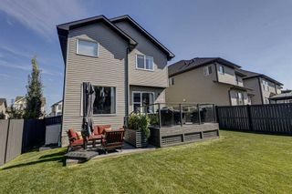 Photo 37: 17 Cranberry Lane SE in Calgary: Cranston Detached for sale : MLS®# A1142868