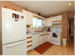 Photo 15: 4621 54A Street in Ladner: Delta Manor House for sale : MLS®# V1053819