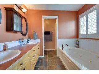 Photo 23: 83 MT SELKIRK Close SE in Calgary: McKenzie Lake House for sale : MLS®# C4066159