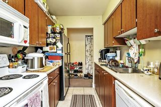 """Photo 10: 1 5700 200 Street in Langley: Langley City Condo for sale in """"LANGLEY VILLAGE"""" : MLS®# R2594360"""