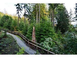 Photo 20: 410 1415 PARKWAY BOULEVARD in Coquitlam: Westwood Plateau Condo for sale : MLS®# R2242537