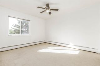 Photo 22: 401C 4455 Greenview Drive NE in Calgary: Greenview Apartment for sale : MLS®# A1052674