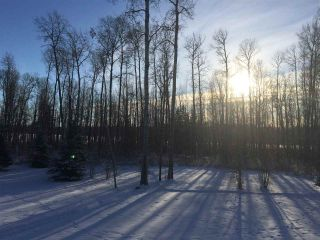 Photo 10: 26429 TWP RD 635: Rural Westlock County Manufactured Home for sale : MLS®# E4204957