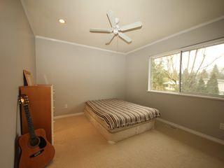 Photo 12: 12483 204 Street in Maple Ridge: Northwest Maple Ridge House for sale : MLS®# R2334396