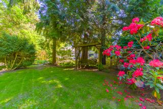 """Photo 51: 7789 KENTWOOD Street in Burnaby: Government Road House for sale in """"Government Road Area"""" (Burnaby North)  : MLS®# R2352924"""