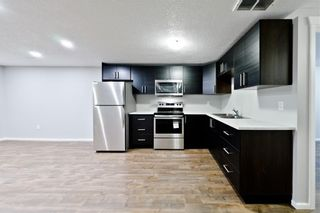 Photo 20: 100 DOVERVIEW Place SE in Calgary: Dover Detached for sale : MLS®# A1024220