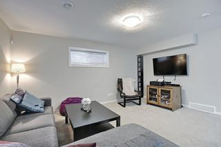 Photo 45: 138 Nolanshire Crescent NW in Calgary: Nolan Hill Detached for sale : MLS®# A1100424
