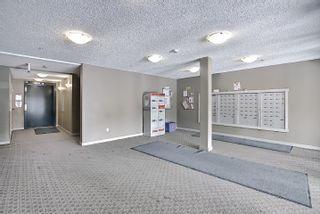 Photo 33: 317 18126 77 Street in Edmonton: Zone 28 Condo for sale : MLS®# E4266130