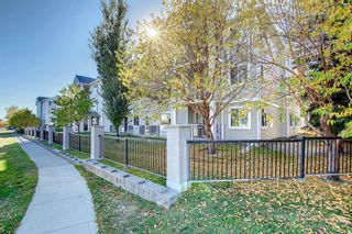 Photo 33: 205 7205 Valleyview Park SE in Calgary: Dover Apartment for sale : MLS®# A1152735