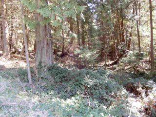 "Photo 2: LOT 2 FORIN ROAD: Keats Island Land for sale in ""EASTBOURNE"" (Sunshine Coast)  : MLS®# R2614283"