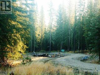 Photo 7: 53018 RANGE RD 175 in Rural Yellowhead County: Vacant Land for sale : MLS®# AW38443
