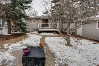 Photo 25: 2543 11 Avenue NW in Calgary: St Andrews Heights Detached for sale : MLS®# A1066144