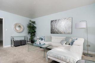 Photo 11: 510 Dominion Street in Winnipeg: Wolseley Residential for sale (5B)  : MLS®# 202118548