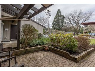 Photo 6: 3 4860 207 STREET in Langley: Langley City Townhouse for sale : MLS®# R2558890