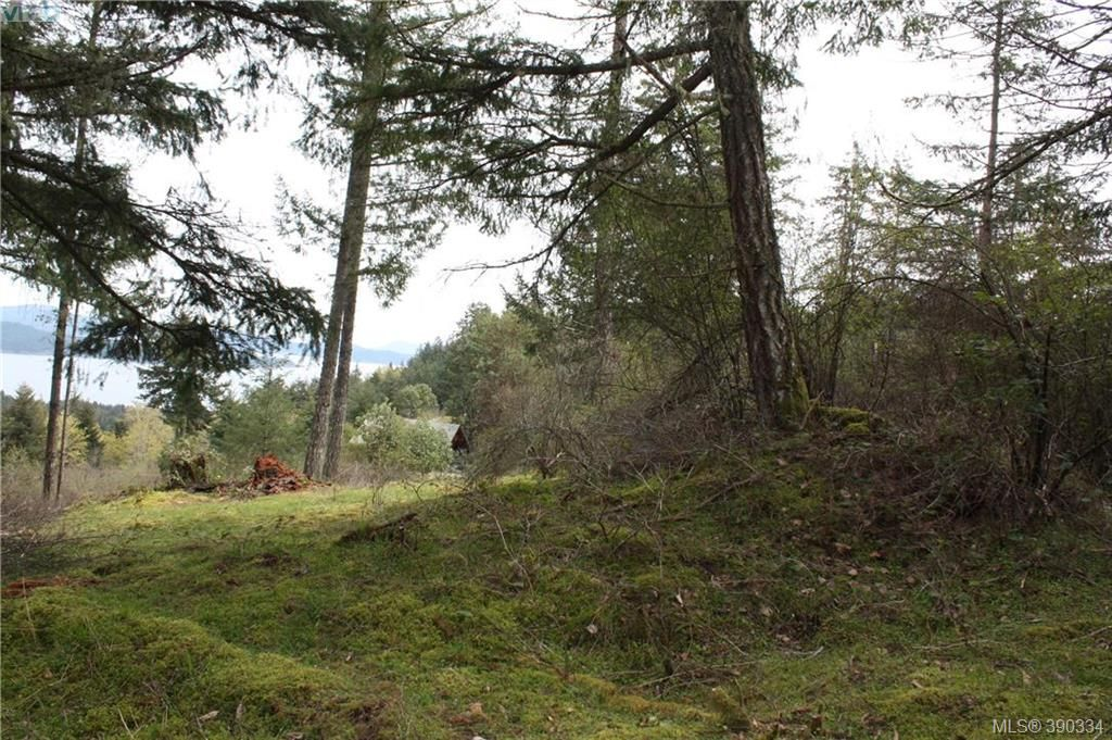 Photo 3: Photos: 414 Stewart Rd in SALT SPRING ISLAND: GI Salt Spring Land for sale (Gulf Islands)  : MLS®# 784416