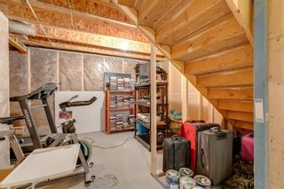 Photo 44: 90 Masters Avenue SE in Calgary: Mahogany Detached for sale : MLS®# A1142963