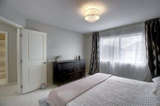 Photo 26: 166 Walden Park SE in Calgary: Walden Detached for sale : MLS®# A1054574