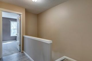Photo 19: 28 Promenade Way SE in Calgary: McKenzie Towne Row/Townhouse for sale : MLS®# A1104454