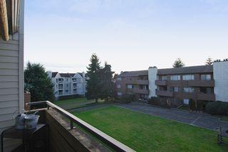 """Photo 9: 302 7295 MOFFATT Road in Richmond: Brighouse South Condo for sale in """"DORCHESTER CIRCLE"""" : MLS®# V931295"""