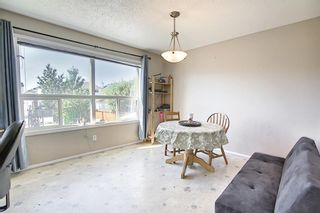 Photo 20: 327 Taravista Street NE in Calgary: Taradale Detached for sale : MLS®# A1125170