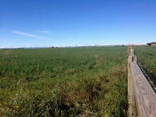 Photo 3: 48: Rural Foothills County Land for sale : MLS®# C4235807