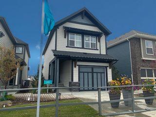 Photo 29: 17 Magnolia Terrace SE in Calgary: Mahogany Detached for sale : MLS®# A1147634