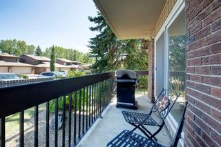 Photo 16: 211 860 MIDRIDGE Drive SE in Calgary: Midnapore Apartment for sale : MLS®# A1025315