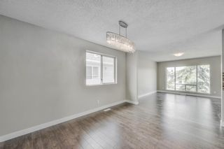 Photo 7: 17 MARTINDALE Boulevard NE in Calgary: Martindale House for sale : MLS®# C4121854
