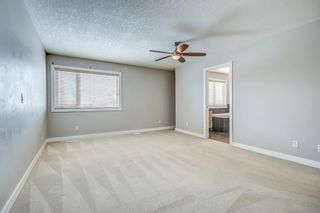 Photo 25: 150 Cranwell Green SE in Calgary: Cranston Detached for sale : MLS®# A1066623