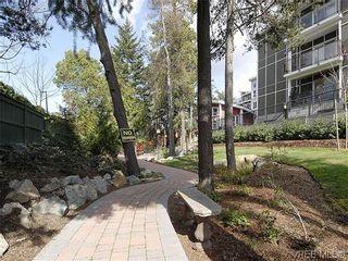 Photo 20: 206 866 Brock Ave in VICTORIA: La Langford Proper Condo for sale (Langford)  : MLS®# 603957