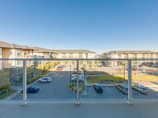 Photo 23: 3412 240 SKYVIEW RANCH Road NE in Calgary: Skyview Ranch Apartment for sale : MLS®# C4303327