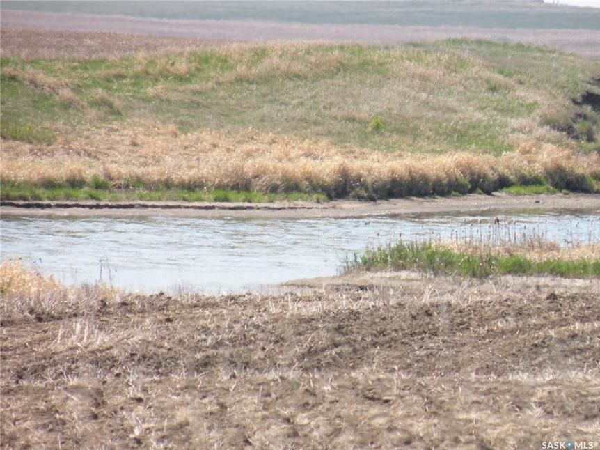 Main Photo: Patkau   land in Rosedale: Farm for sale (Rosedale Rm No. 283)  : MLS®# SK868300