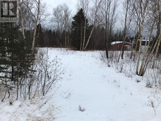 Photo 2: 0 New World Island Forestry Access Road in Summerford: Vacant Land for sale : MLS®# 1229207