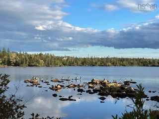 Photo 16: Lot 4 Frog Lake Road in Mineville: 31-Lawrencetown, Lake Echo, Porters Lake Vacant Land for sale (Halifax-Dartmouth)  : MLS®# 202124937