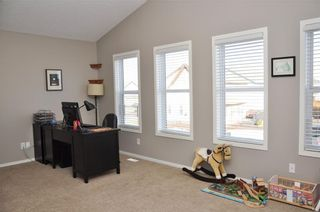 Photo 20: 13 COPPERLEAF Way SE in Calgary: Copperfield House for sale : MLS®# C4113652
