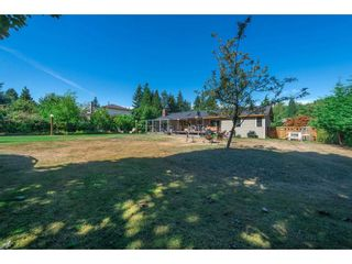 Photo 19: 14122 57A Avenue in Surrey: Sullivan Station House for sale : MLS®# R2229778