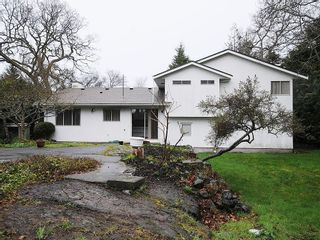 Photo 19: 2006 Runnymede Ave in Victoria: Residential for sale : MLS®# 289922