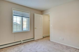Photo 13: 3117 6818 Pinecliff Grove NE in Calgary: Pineridge Apartment for sale : MLS®# A1069420