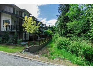 "Photo 20: 6 23986 104 Avenue in Maple Ridge: Albion Townhouse for sale in ""SPENCER BROOK"" : MLS®# V1066676"
