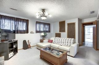 Photo 19: 67 Penmeadows Place SE in Calgary: Penbrooke Meadows Detached for sale : MLS®# A1066670