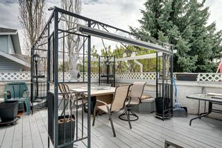 Photo 39: 17 Shannon Circle SW in Calgary: Shawnessy Detached for sale : MLS®# A1105831