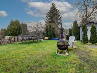 Photo 21: 4123 Holland Ave in : SW Strawberry Vale House for sale (Saanich West)  : MLS®# 866922