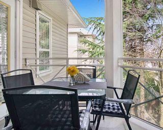 Photo 16: 309 8068 120A Street in Surrey: Queen Mary Park Surrey Condo for sale : MLS®# R2561621