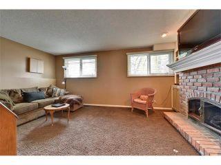 Photo 22: 131 LAKE CRIMSON Close SE in Calgary: Lake Bonavista House for sale : MLS®# C4064324