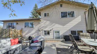 Photo 43: 347 Whiteside Road NE in Calgary: Whitehorn Detached for sale : MLS®# A1153718