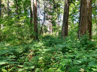 Photo 3: 20 Pirate Pl in : Isl Protection Island Land for sale (Islands)  : MLS®# 878593